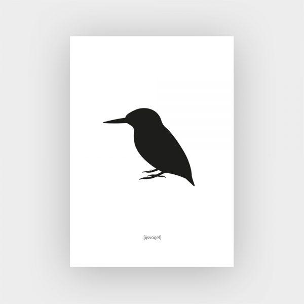 Kaart_vogels_ijsvogel