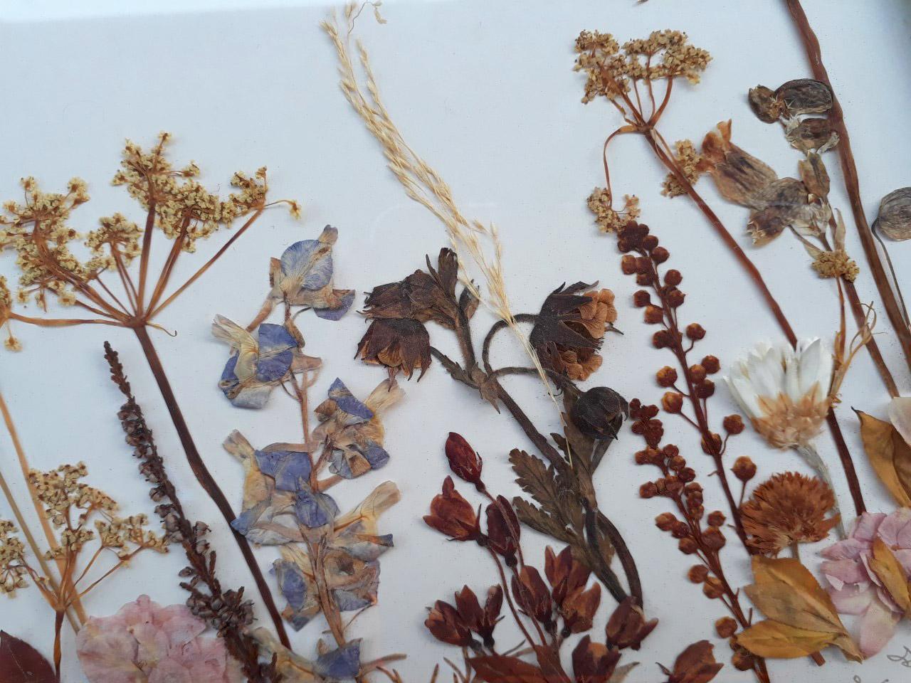 4 productfoto lijst droogbloemen