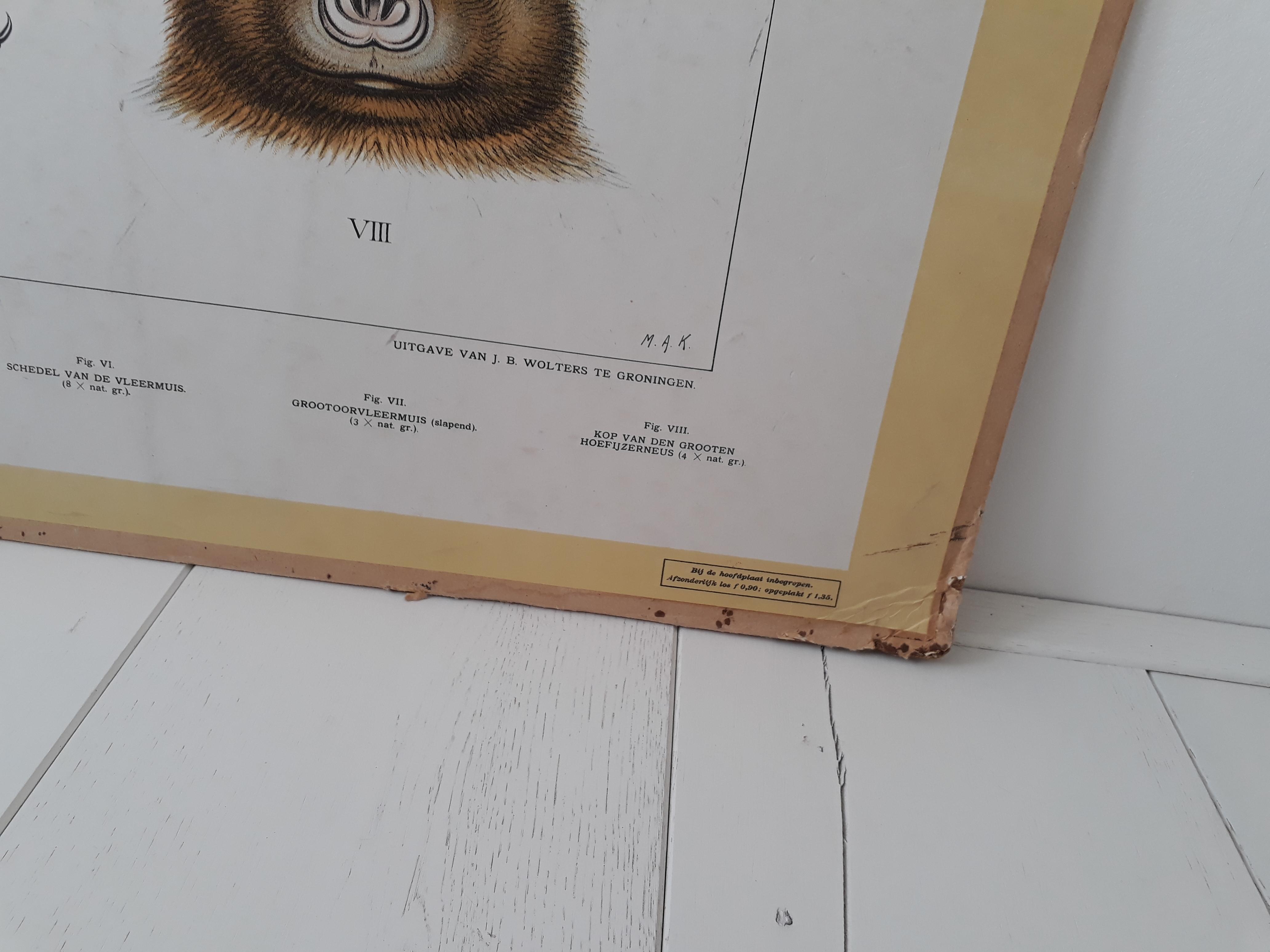 Schoolplaat 1 productfoto 3